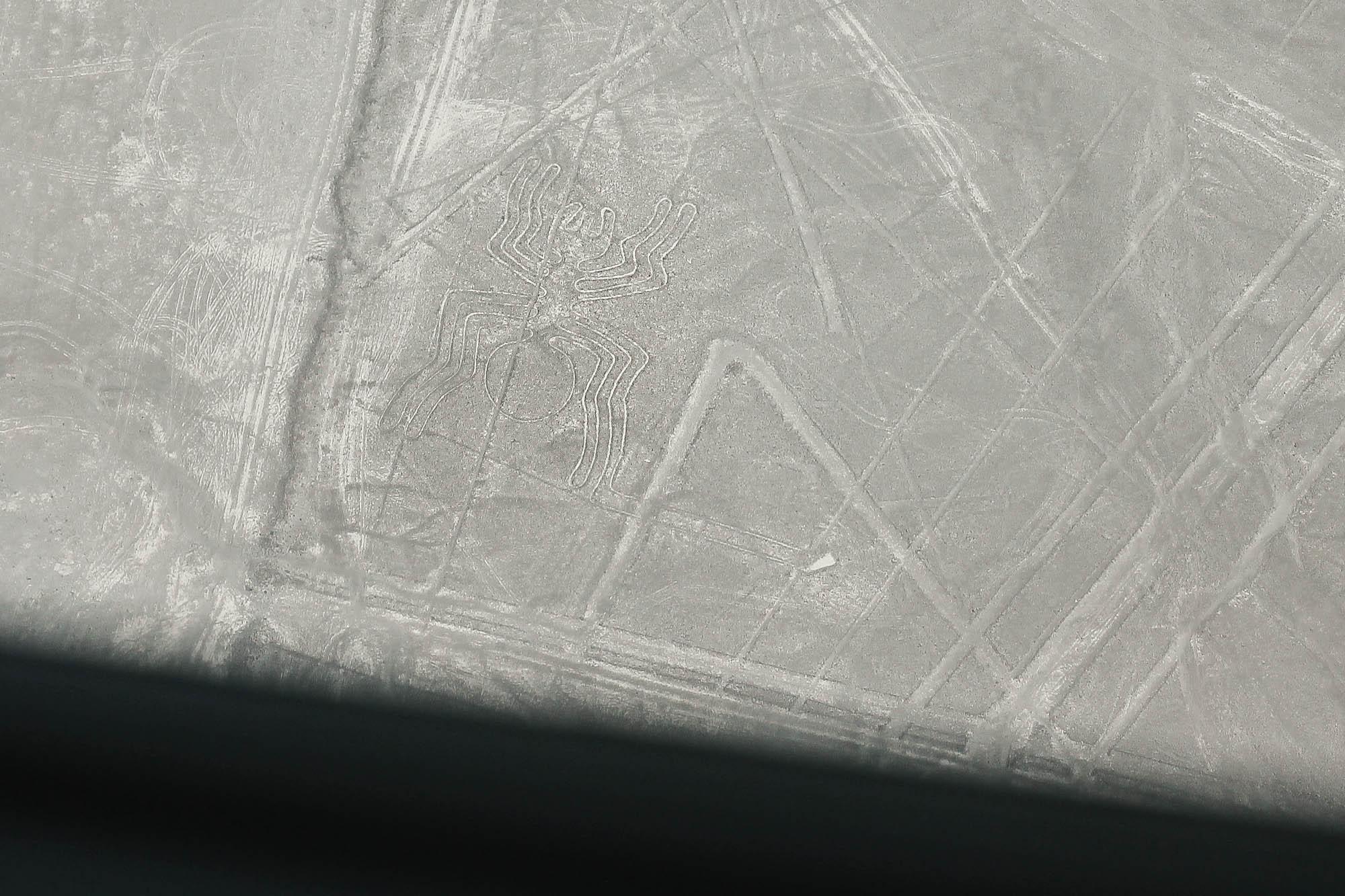nazca-15